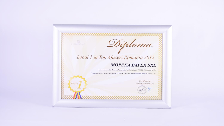 Top Profit România 2012 din județul Timis - locul 1