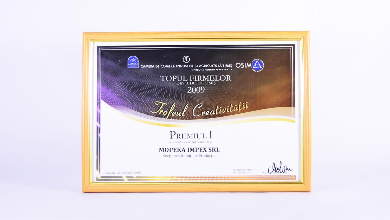 Topul Firmelor 2009 din județul Timiș - locul 1