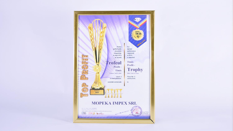 Trofeu Profit 2013 din județul Timis - locul 3