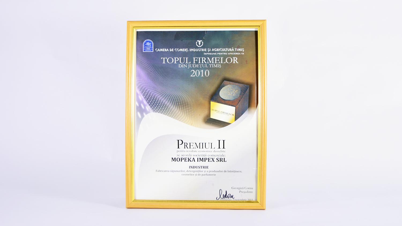 Topul Firmelor 2010 din județul Timiș - locul 2