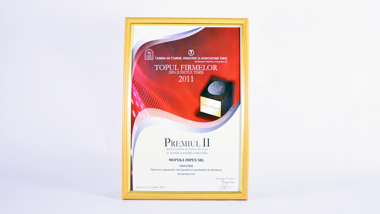 Topul Firmelor 2011 din județul Timiș - locul 2